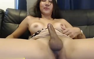 Unmitigatedly Good-looking Chunky Breast Ladyboy Germ