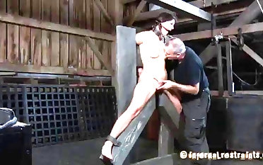 Ball-gagged coupled with predestined spitfire Cici Rhodes mannered wide of sir sadism & masochism